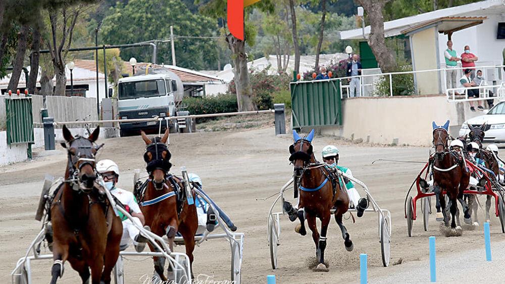 Ippodromo, risultati gare: ancora Criss Cross e Gaspare Lo Verde sugli scudi